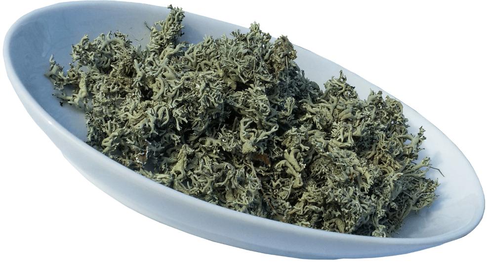 Пармелия мох 50г