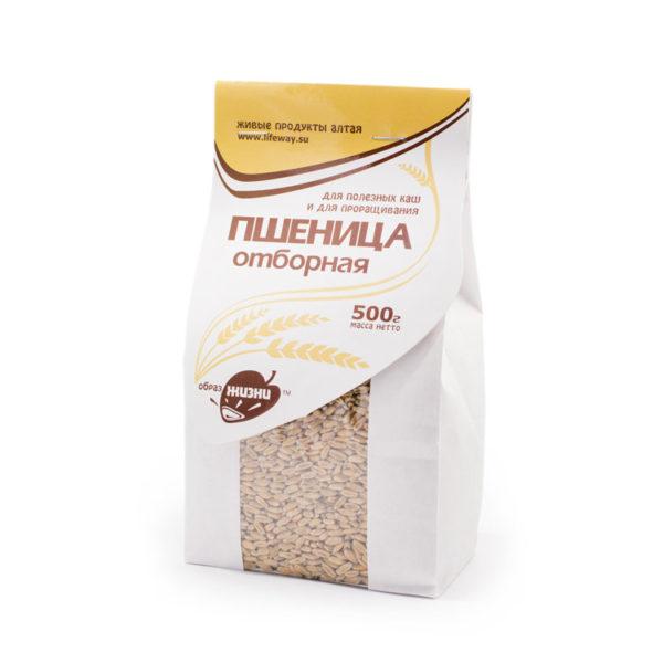 Пшеница отборная зерно для проращивания 500гр образ жизни