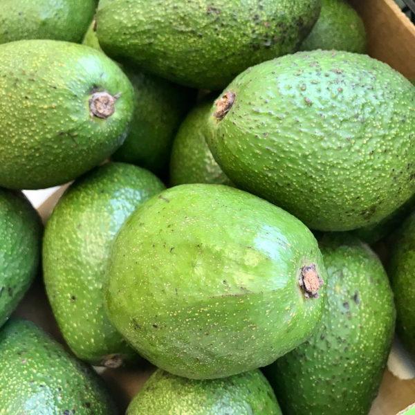 авокадо свежие отборные