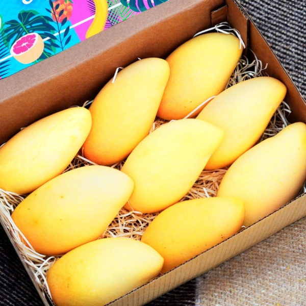 манго тайский