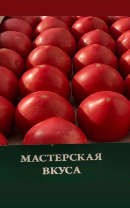 томаты сладкие